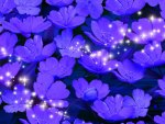 Purple Lilies and Stars
