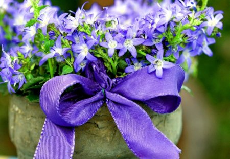 Flowers with ribbon - flowers, blue, bunch, harmony, ribbon, nice, bouquet, beautiful, lovely, pretty, delicate