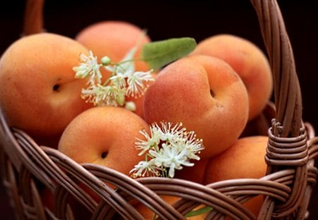 Fresh fruit - fresh, apricot, fruit, basket, summer, yummy, tasty, blossom