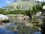 in a mountain lake