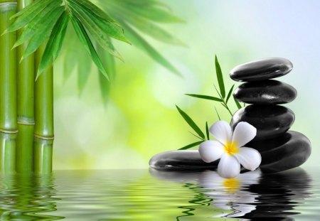Spa concept - relax, spa, water, bamboo, rest, zen, flower, beautiful, reflection, mirrored, concept, soft, stones, bazalt, pastel, green