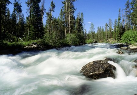 Redfish Creek Idaho