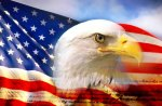 BALD HEADED EAGEL ON THE ANERICAN FLAG