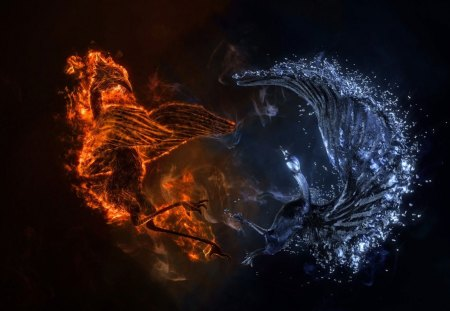 Bird of Fire & Water - fire, water, cg, fight