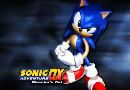 Sonic Adventure DX Director's Cut - video games, sonic, sonic adventure dx directors cut, blue