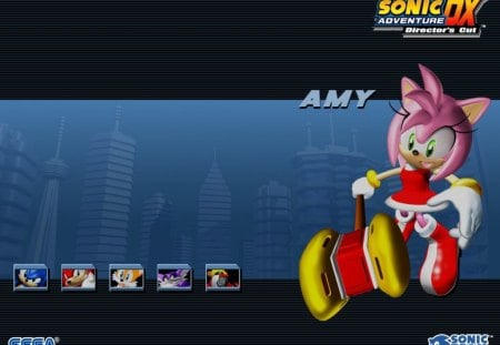 Sonic Adventure DX Director's Cut-Amy - amy, amy rose, knuckles, sonic adventure, gamma, tails, video games, hammer, e-102, big, sonic, sonic adventure dx directors cut