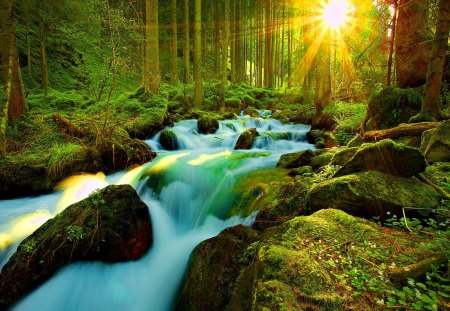 Sunlight through the forest - stream, fall, rocks, glow, sun, falling, dazzling, shine, beautiful, stones, waterfall, river, forest, sunlight, greenery, creek, trees, water, plants, summer, nature