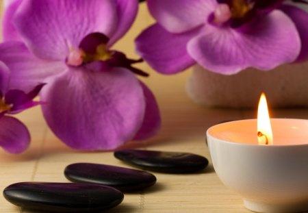 wellness spa se porrfilm gratis