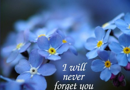 Message for MICHAEL♥ - message, forever, flowers, blue, floral