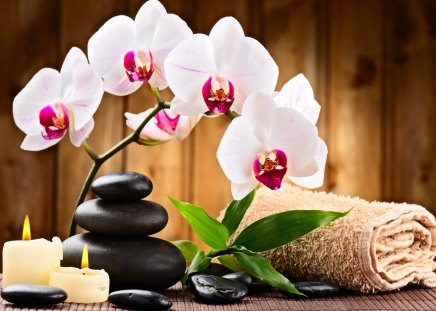 Spa relax - lovely, candles, flowers, exotic, relax, nice, pretty, stones, leaves, towel, spa, beautiful, orchids