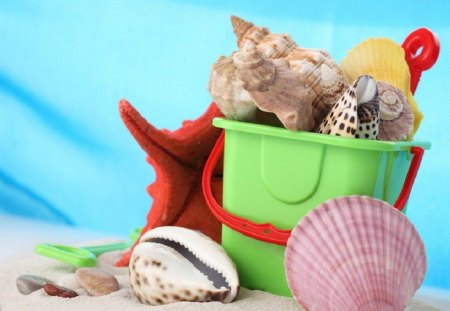 Summer time - starfish, shells, conch shell, fun, bucket, summer, sand, sea shells, red, green, beach, spiral