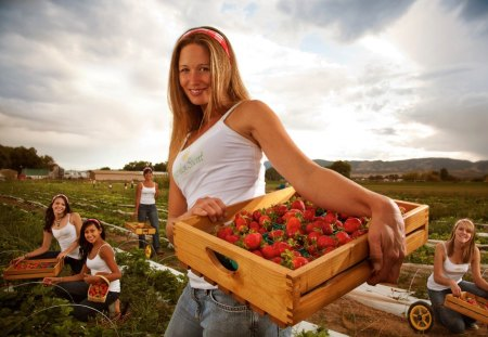 Sweet Strawberries - sweet, photoshop, strawberries, smile, woman, photography, work, beautiful, farm, country