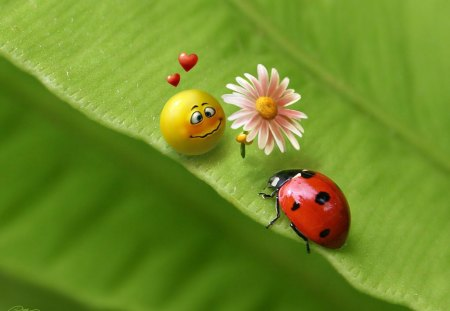 True Love :) - hearts, lady bug, smile, flower, love