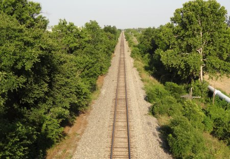 Looking Down The Tracks - railroad, railroad tracks, tracks, trees, rocks