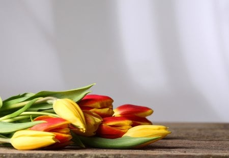 Tulips - red, pretty, red tulips, colors, yellow, beautiful, still life, yellow tulips, photography, bouquet, red tulip, flowers, beauty, nature