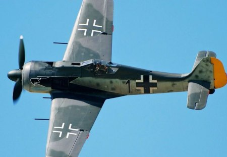 Focke Wulf Fw 190 - world, 190, old, wulf, fw190, focke, fw-190, wwii, classic, vintage, german, war, ww2, antique, airplane, plane, fw