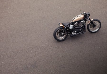 Harley Davidson - arley, davidson, bike, sportster