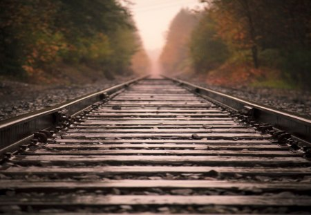Train Track - train, railway, photo, track