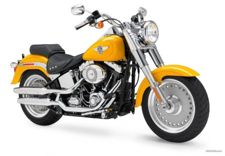 2011 FATBOY - motorcycle, fatboy, harley, davidson, kool