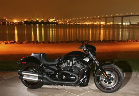 Harley Davidson In The City - motorcycle, city, night, in the city, harley davidson