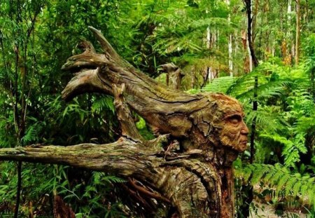 Native American Wood Carving - carve, beautiful, chief, wood, headdress, tree, art, indian