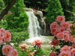 The cascade and the flowers.