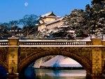 bridge of peace!