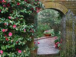 Woodland-Garden-Archway-Filoli-Estate-Quase-Woodside-California.