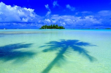TROPICAL ISLAND - beauty, planting, windward islands, nobody, french polynesia, pacific islands, resort, coast, palm tree, tropical climate, island, scenic, water, polynesia, shadow, sea, clouds, society islands, tahiti, water line, horizon over water, beach, sky, beauty in nature, tree