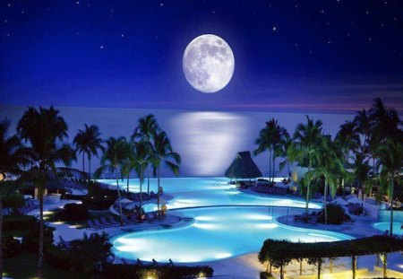 Tropical Moon - moonlight, blue, tropical, moon, water, night, beach