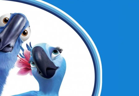 Parrot couple - cartoon, rio, movie, parrot