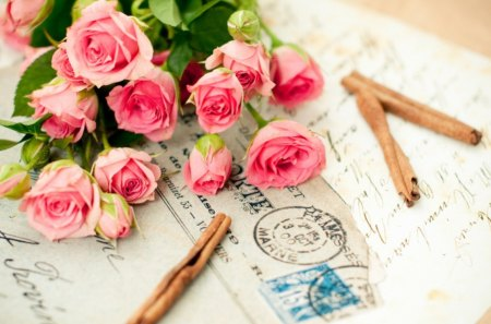 Love Letter - clip, letter, love, rose
