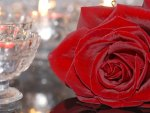 Rose with crystal glas
