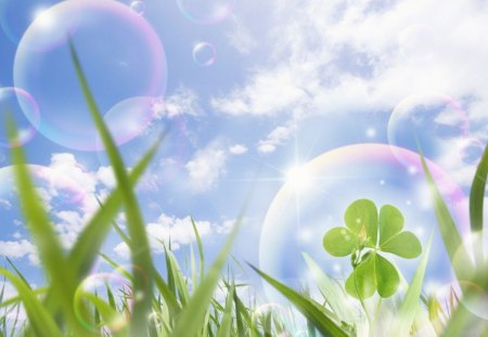 Eco Concept Photos - Blue sky and Gassland, bubbles and clover - cg, blue sky, clover, gassland, abstract, bubbles