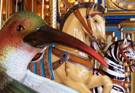 A Carousel Race! - carouse1, hummingbird, michigan, sterling heights, orange and white tigers, carousel, hare, golden, horse, cat, rabbit, amusement park, american bald eagle, zebra, double decker, stairs, merry go rounds, lakeside shopping mall, dragon, bird, anima1, pony, architecture