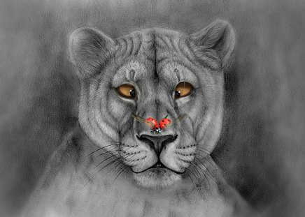 I'M CONFUSED - lioness, painting, funny, art, abstract