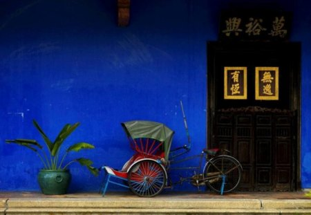 Asian Still Life - plant, blue, bicycle, door, asia, picture, pic, ideogram, photo, pot, color, asian, wall, colour, flower, image, still life, bike, wallpaper, photography