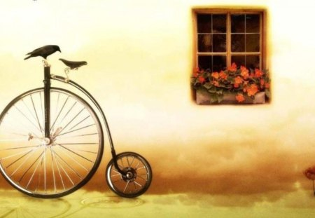 Digital still life - flowers, digital, pic, colors, image, colours, bike, still life, window, bicycle, picture