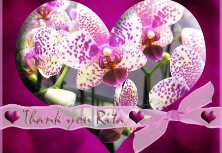 ♥ Thank You Heart For Rita ♥ - violet, bow, flowers, hearts, thank you, orchids