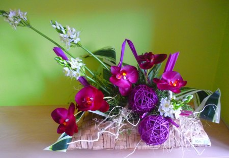Violet flowers - orchid, violet flowers, basket, decoration