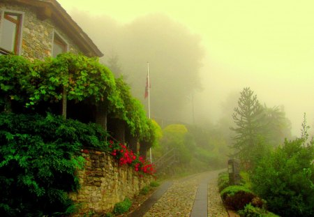 MORNING FOG - village, town, fog, flowers, morning, trees, herbs, road