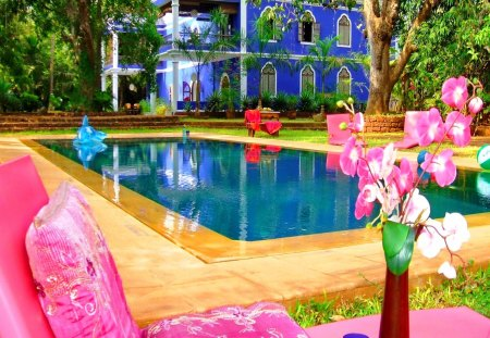 Place for relax - sun bed, vase, destination, flowers, relax, pool, rest, hotel, america, orchids, summer, pink, swimming pool, holiday, water, exotic, mirrored, place, cuba, reflection, tree