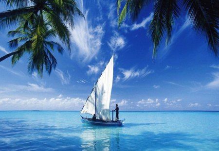 Sailing on the Deep Blue Sea - beautiful, sail, blue, ocean, tropical, sky, sea, boat