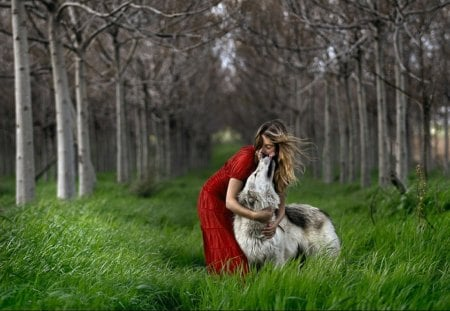 Forest Elf with best Friend - wolf, trees, predator, women