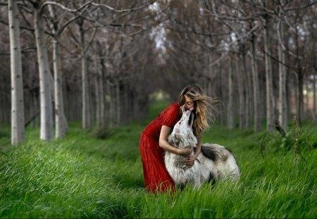 Forest Elf with best Friend - women, predator, wolf, trees