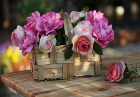 Basket of Pretty Pink Roses - pretty, bouquet, rose, basket, flower, cuttings, arrangement, pink