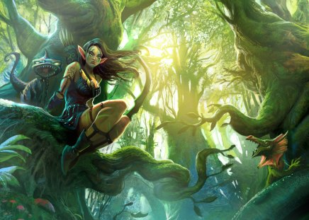 Elf - fantasy, elf, girl, women, female