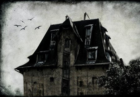 GHOST HOUSE - ghost house, hounted house, birds, textures, bw, dark, art, neverland