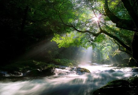 wallpaper peaceful flowing - photo #27