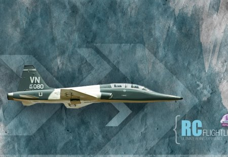 Northrop T-38 Talon - Remote Control - controlled, fighter, remote, trainer, t-38, talon, t38, aircraft, airplane, northrop, plane, rc, radio, military, jet